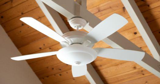 best plastic blade ceiling fan