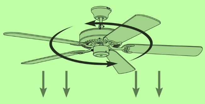 Which Direction For Ceiling Fan In Summer Gatistwam
